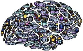 conoce-tu-cerebro-con-mindfulness